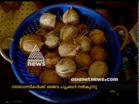 """ Krishi Bhoomi"" WhatsApp group promoting organic Farming and selling vegetables"