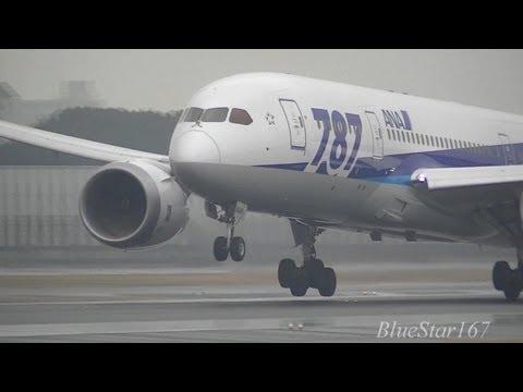 All Nippon Airways (ANA) Boeing 787-8 (JA804A) landing at ITM/RJOO (Osaka - Itami) RWY 32L