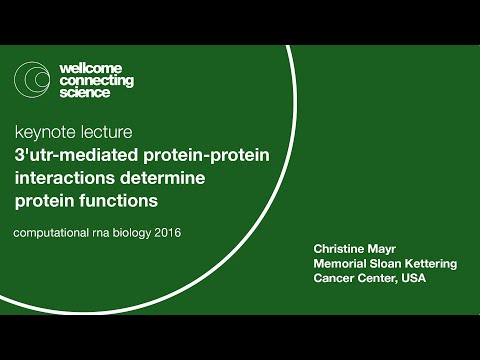 3'UTR-mediated protein-protein interactions determine protein functions - Christine Mayr