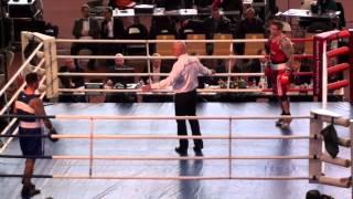 Nyrkkeilyn SM-kilpailut 2014 - loppuottelut