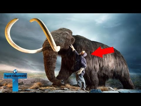 Top 10 Extinct Animals That Will Be Resurrected Soon