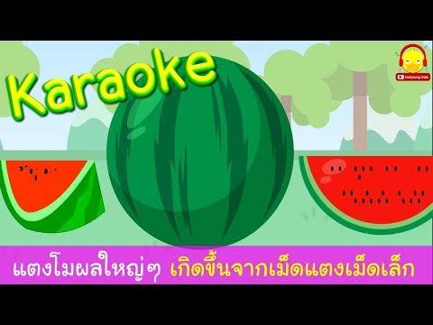 เพลงแตงโมผลใหญ่ๆ คาราโอเกะ Watermelon karaoke song | เพลงเด็กอนุบาลมีเนื้อเพลง indysong kids