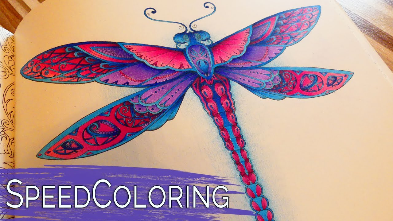 Coloring in dragonflies - Coloring A Dragonfly Enchanted Forest Johanna Basford