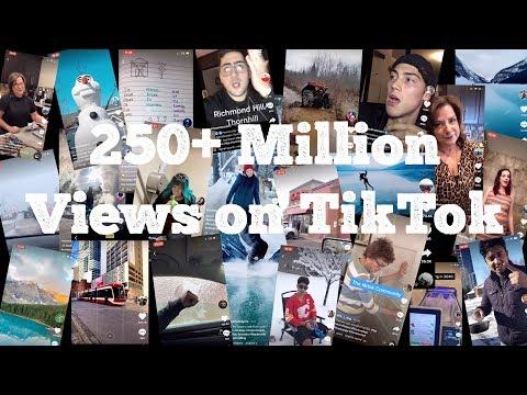 Most Viewed TikTok Videos