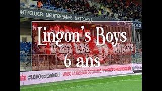 Montpellier HSC - Dijon FCO 17/03/2018 Lingon's Boys 6 ans
