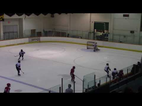 2017-2018 PEEWEE A1 Surrey vs A1 NSW Club - League Game - Jan 09, 2018 1-4L 2nd Period