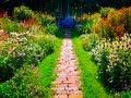 English Garden 上野ファーム 北海道ガーデン街道  花の名所  花見頃 Hokkaido flower garden
