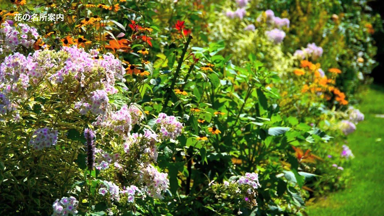 English garden hokkaido flower for English garden tools yeah yeah yeah