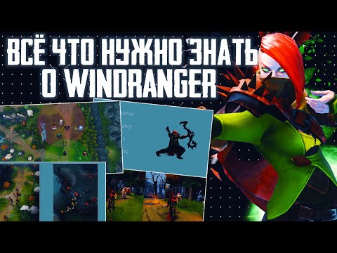 видео: ВСЁ ЧТО НУЖНО ЗНАТЬ О windranger