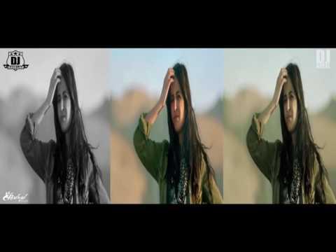 Afghan Jalebi   Phantom   Dj Aqeel & DJ Rishabh club remix   YouTube