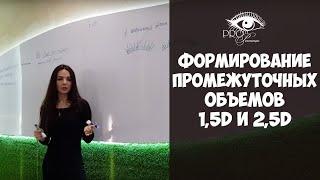 Формирование промежуточных объемов (1,5Д и 2,5Д) - Обучение наращиванию ресниц