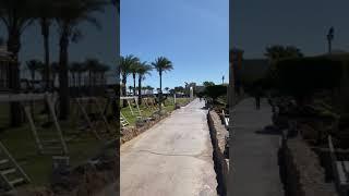 Погода Египет Шарм 03 февраля 2020 год регион Набк Бей отель Albatros Moderna 5