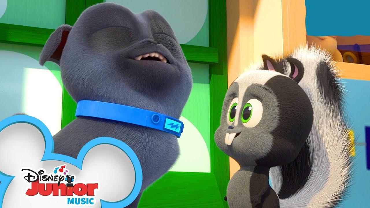 Stinky Stuff Is Everywhere Music Video Puppy Dog Pals Disney Junior Youtube