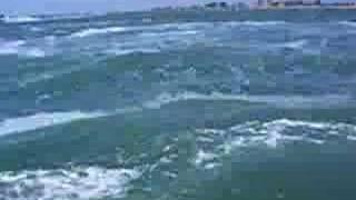 Waverunners in Tampa 3 Thumbnail