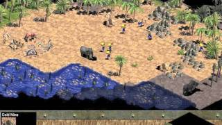 Tribute to Age of Empires-