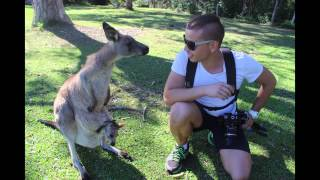 Big Trip To Australia Part  5 Kangourou   HD 1080p