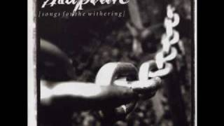 Rapture - Transfixion
