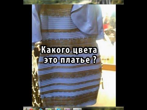 Какого цвета это платье: белое-золотистое или сине-черное?