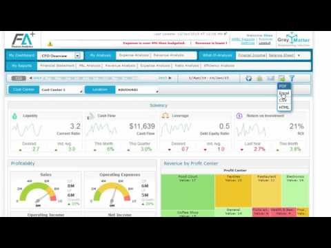 CFO Dashboard Demo - Financial Analytics (FA+)