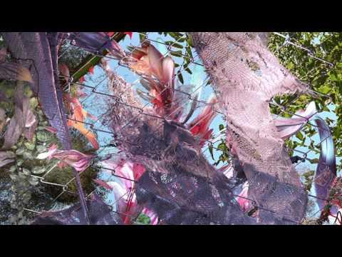 Kingdom - What is Love [Audio] ft. SZA