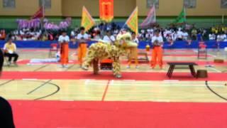2013全港學界龍獅錦標賽(佛教中華康山學校)(1)
