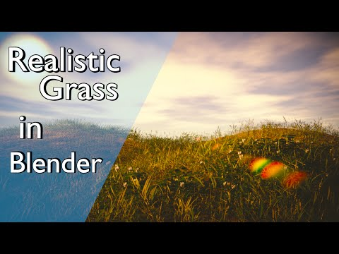 How to Make a Realistic Grass Field in Blender
