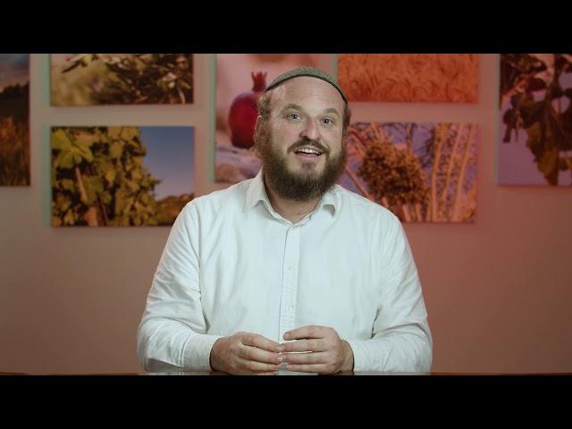Vayigash – When Jews Scream – Rabbi Shlomo Katz