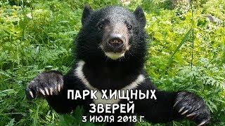 ПАРК ХИЩНЫХ ЗВЕРЕЙ 3 ИЮЛЯ 2018 Г.