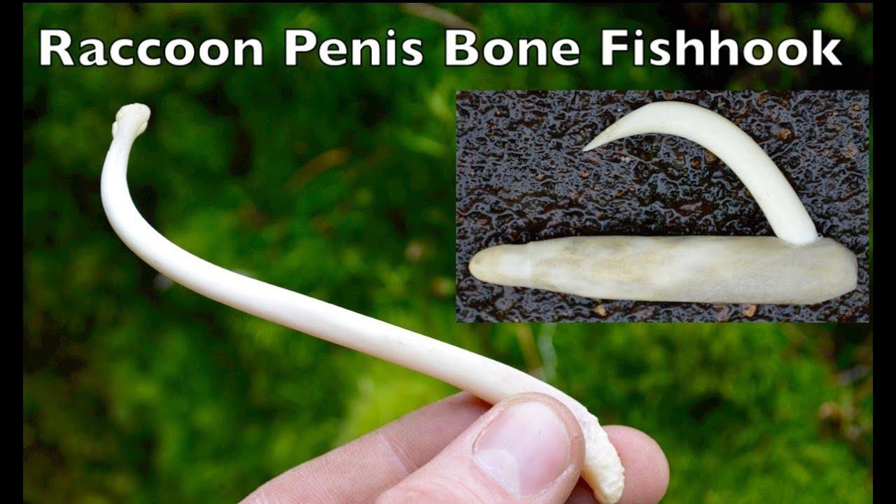 Visit You fish hook in penis post photos