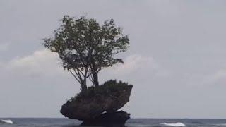 Rain Shower in Papua New Guinea
