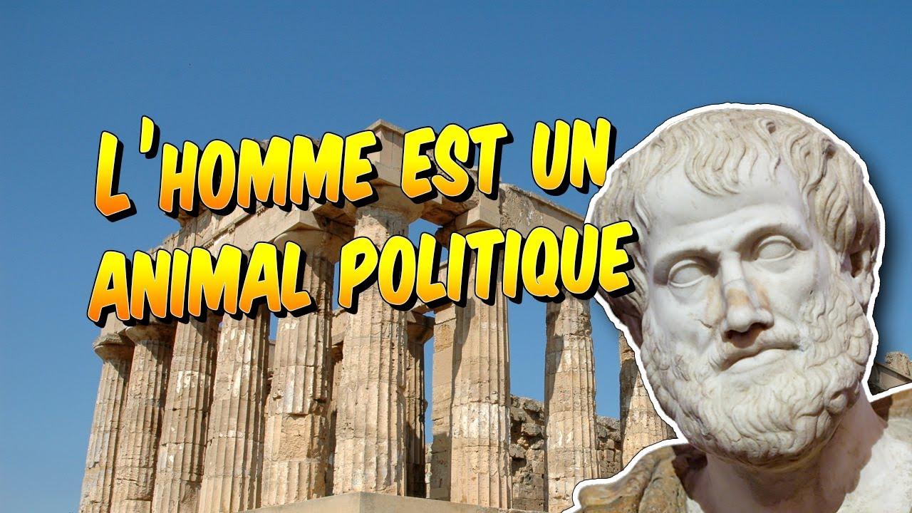 Philosophie Aristote L Homme Est Un Animal Politique Explication De Citation Youtube Naturellement Bon Dissertation