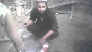 bakra eid ki qurbani