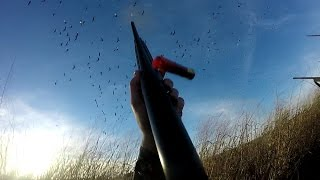 EPIC Goose hunt WITH 4 MAN LIMIT-Kansas 2017 Goose Hunting