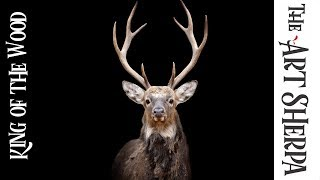 How to paint wildlife  with Acrylic on Canvas Stag Head Live stream