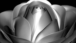 3D AudioVisual Music -- Groovin