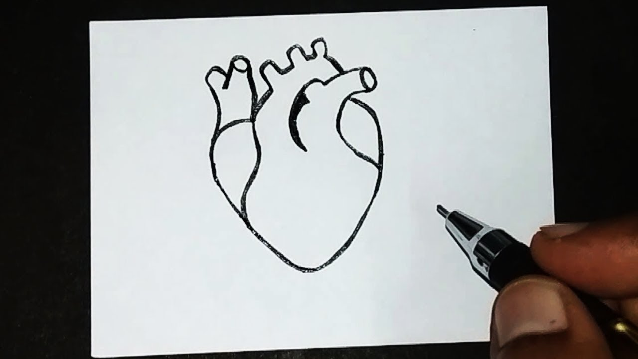 How to draw Easy heart drawing for kids   World Heart Day ...