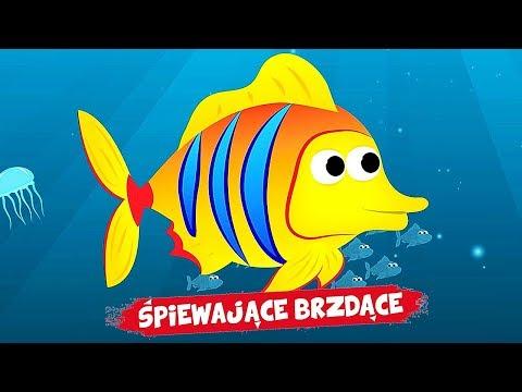 Śpiewające Brzdące - Kolorowa rybka - Piosenki dla dzieci