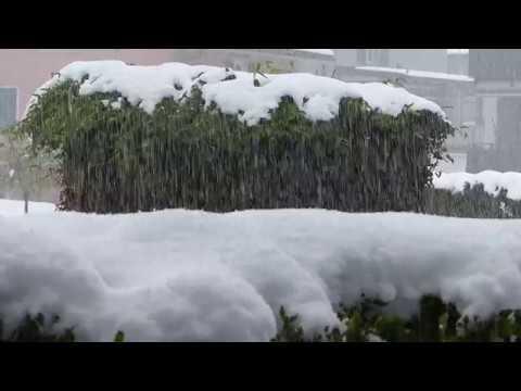 Schneefall am 4. und 5. Mai 2019
