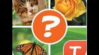 Pics Puzzle Tango Level Word