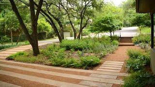 Old Yard to New Garden Concept | Janie Orr | Central Texas Gardener