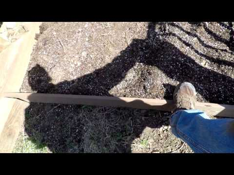 Pest Free Organic Gardening 8 – Making raised garden beds for vegetables