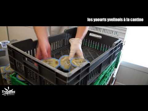Des yaourts fabriqués dans le...