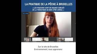 La pratique de la pêche à Bruxelles, 24 février 2021