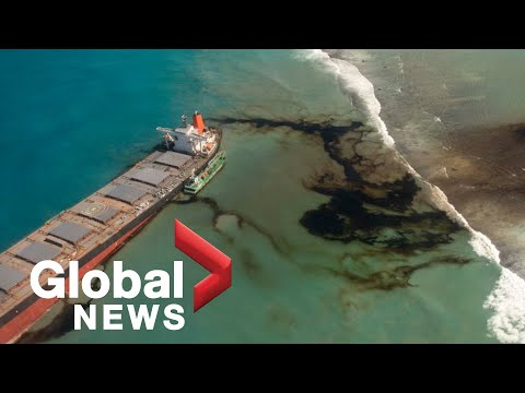 Mauritius oil spill: Experts fear catastrophic ecological disaster