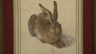 Albrecht Dürer: Masterpieces at the Albertina