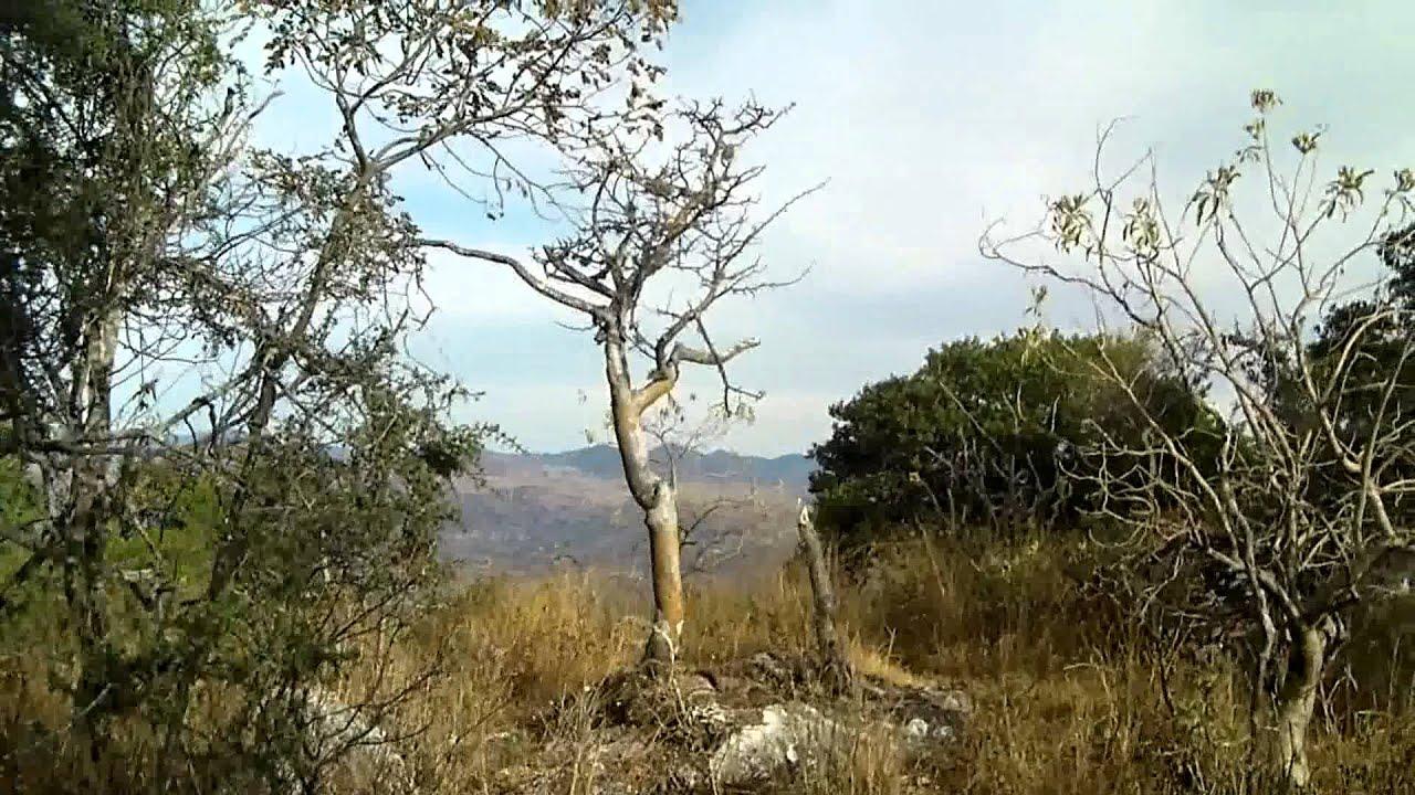 Vista Panoramica de San Marcos Arteaga y Huajuapan de Leon - YouTube