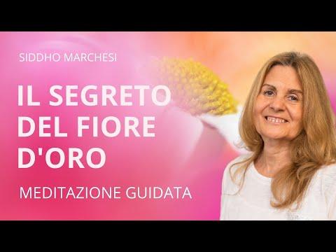 IL SEGRETO DEL FIORE D'ORO | Meditazione Guidata Con Siddho