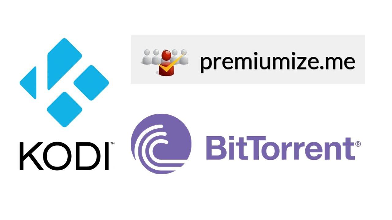 Premiumize Cloud: Videos mit dem Kodi Plugin abspielen