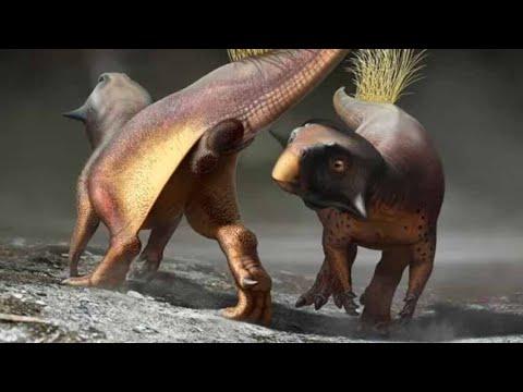 """El primer """"agujero"""" de dinosaurio mejor conservado"""