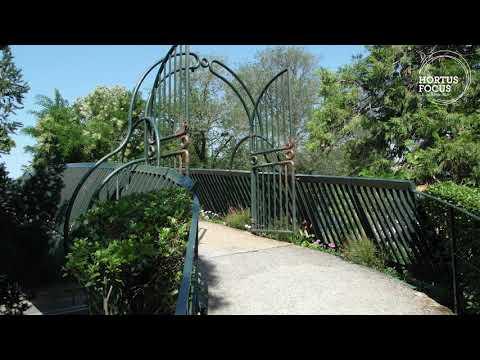 Découverte : le Jardin des Plantes de Toulouse